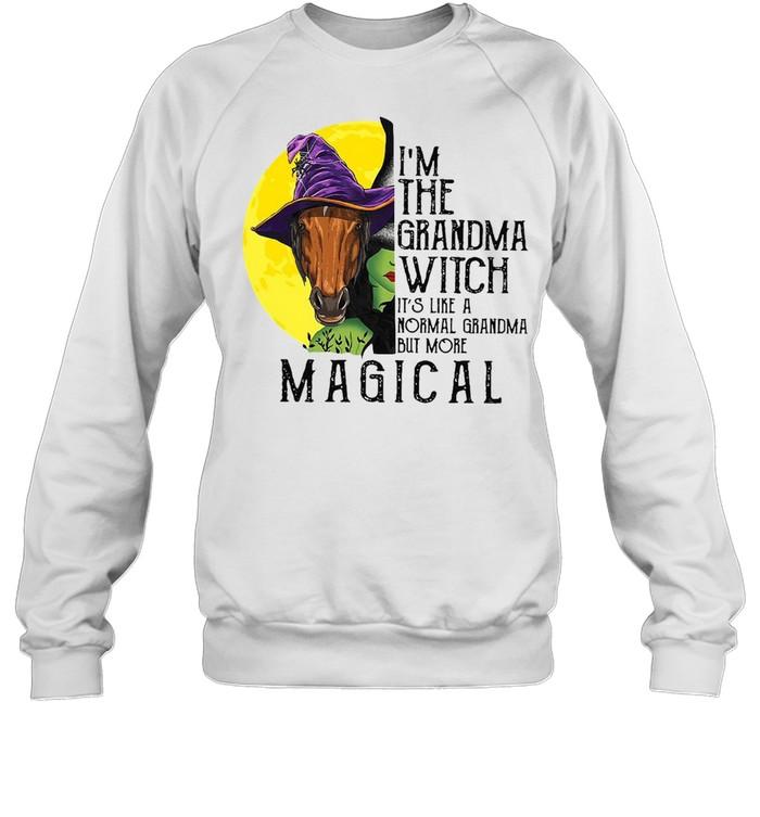 Horse Girl I'm The Grandma Witch It's Like A Normal Grandma But More Magical T-shirt Unisex Sweatshirt